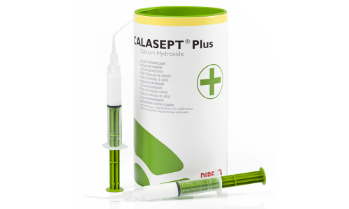 Calasept Plus, material for temporary sealing of root canals, 1.5g